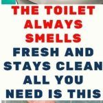 The Toilet Always Smells Fresh And Stays Clean. All You Need Is This - Healthy Magazine All You Need Is, Told You So, 2 Ingredient Recipes, Baking Soda And Lemon, Homemade Toilet Cleaner, Homemade Shampoo, Loose Skin, Best Essential Oils, Natural Solutions