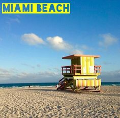 Winter Tourist Guide for Miami Beach!! Read where to stay, where to eat & what to do!