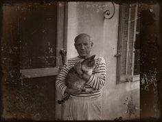 hospício moinho dos ventos: SINTAXE DA LINGUAGEM VISUAL por Ney Ferraz Paiva  gatos roeram a cara de Picasso...