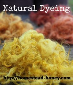 Beautiful, vibrant colors can be achieved by dyeing with plants found on your homestead on in your backyard!