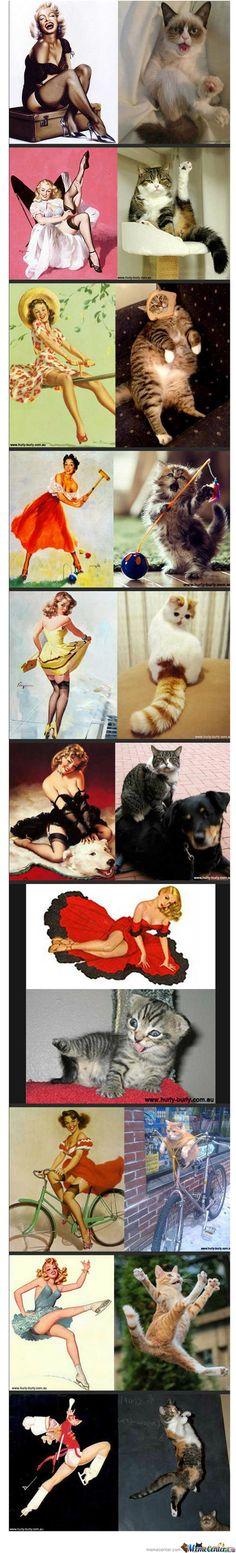 Cats and pin-ups