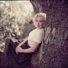 "Color camera transparency of Marilyn Monroe from ""Tree"" sitting by Milton Greene. Color 2.25 x 2.25 in. camera transparency on Ektachrome film of Marilyn Monroe from ""Tree"" sitting in Laurel Canyon for Look by Milton Greene."