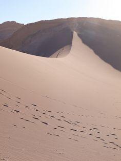San Pedro de Atacama Places Around The World, Around The Worlds, Bolivia, Deserts Of The World, Desert Environment, Chili, Desert Life, South America Travel, Central America