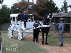 Formal horse carriage