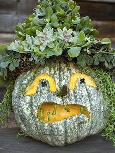 14 Creative Halloween Jack-o'-Lanterns | DIYNetwork.com