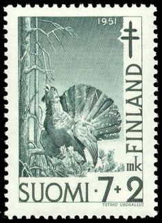 Tuberkuloosi 1951 1/3 - Metso - Sulje napsauttamalla kuvaa