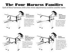 -Harnesses - TeamSnazzyGoat