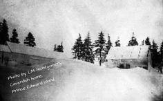 """Winter photo by LMM of the Cavendish homestead---Jan 27 1905 """"The drifts are as high as the house, hemming us in on all sides-'Alp on Alp'"""