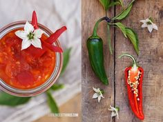 Nicest Things: Harvesting our Home Grown Chillies (Piment D'Espelette) + Sweet Chili Dip