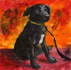 Pet Portraits | Rochelle Weiner Fine Art