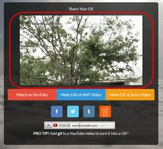 GIGAZINE | YouTubeのURLをコピペするだけでGIFアニメが作れる「GIF YouTube」