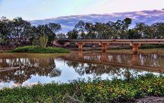 Thomson River, Longreach, Queensland