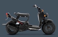 2014 Honda Ruckus - my fifth ride. What a cool little unit. 2014-present
