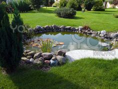 garden fish pond Love the clean look!!