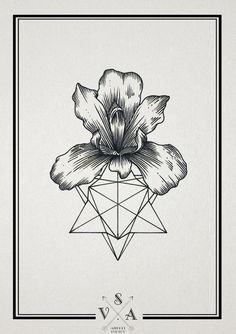 Awesome for a geometric tattoo! Love the tropical flower.
