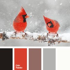 Color Palette #3669 | Color Palette Ideas | Bloglovin'