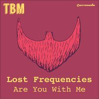 Are You With Me (Radio Edit) - Single' van Lost Frequencies