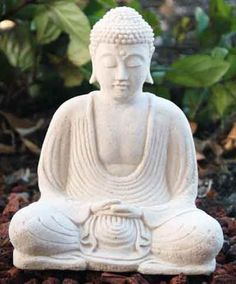 Buddha Statue #backYardIdeas #DIYPlants #OutdoorLiving #OutdoorIdeas #FallIdeas #Summer2016 #CoolPlants RealPalmTrees.com