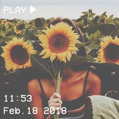 a guide on what to buy to end up being the supreme vsco girl/basic 2019 girl. a guide on what to buy to end up being the supreme vsco girl/basic 2019 girl. Flower Aesthetic, Summer Aesthetic, Aesthetic Vintage, Quote Aesthetic, Aesthetic Photo, Aesthetic Girl, Aesthetic Pictures, Aesthetic Yellow, Vsco