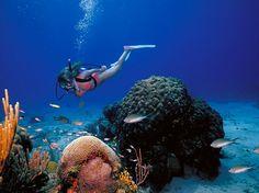 Buck Island Reef National Museum
