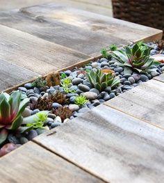 houten vlonder met vetplantjes