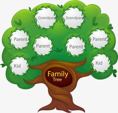 A family tree is a simple chart that represents family relationships in a tree structure form. This exercise can be a great learning activity for your kid. You can help your child maintain a family tree chart book.