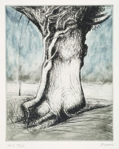 Exhibitions | Current | TREES I: BOLE AND CREEPER | British Council − Visual Arts