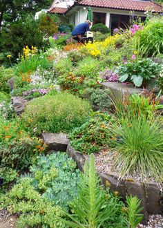prairie break: Branklyn: yet another breathtaking Scottish garden Like the little pebbles also