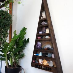 Mama Moon Set - Shelf and Complete Crystal Collection | Stone & Violet