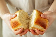 Learn the proper way to freeze bread so you can stock up when it goes on sale or get ahead on your baking.