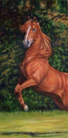 Fiery+Red+Oil+Painting+Horse+Art+Arabian+Western+English+Riding,+painting+by+artist+Debra+Sisson