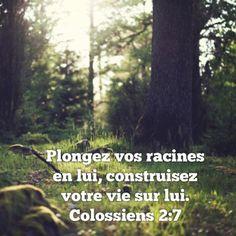 Colossiens 2.7