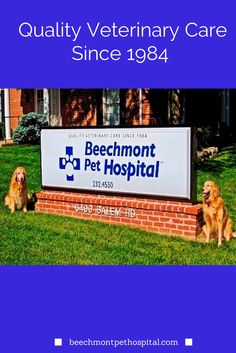 Beechmont Pet Hospital was established in 1984. We moved from Mount Washington to a new facility in Anderson Township, Ohio in February 2007.