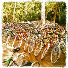 Vendió todo lo que tenía, se construyó una palapa y compró 523 bicicletas. #instacuento
