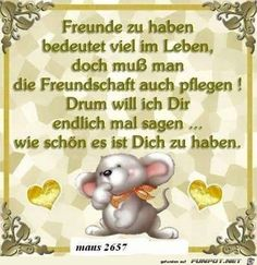 Freunde zu haben Floh, Best Friends, Motto, Roses, Philosophy, Funny Quotes And Sayings, Funny Sayings, Morning Sayings, Good Morning