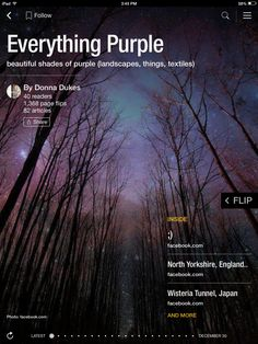 Flip through Everything Purple by Donna Dukes http://flip.it/LiL0i