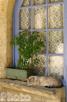 French blue window