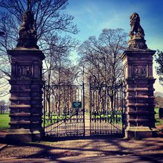 Inverleith Park, Edinburgh. What a lovely place to have on your own doorstep.  From stockbridgeedinburgh.com   those who love where they live.