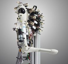 http://www.fastcodesign.com/1669499/omg-look-at-this-robot-with-real-muscles