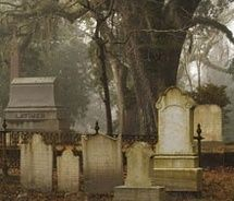 Oakdale Cemetery Wilmington Nc Map.59 Best New Hanover County Nc Images Wilmington North Carolina