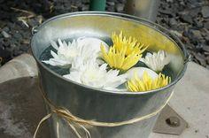 Vintage in a bucket
