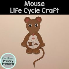 Craft includes: life cycle charts (with and without pictures) ears head arms feet body tail Elementary Science, Teaching Science, Science Activities, Elementary Schools, Cycle Pictures, Life Cycle Craft, Cut And Paste, Life Cycles, Charts