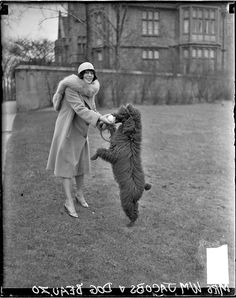 Mrs. William Jacobs and Beauzo the poodle in 1928. Photograph by Chicago Daily News, Inc.