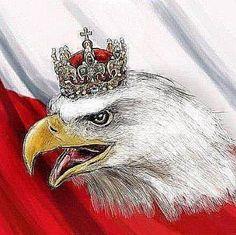 Polska jest jedna Polish Symbols, Dojo, Poland Map, Polish Tattoos, Polish Language, Around The World In 80 Days, Warsaw, Pyrography, Anime Manga