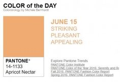 ...y el color de hoy es Néctar de Albaricoque, un color sorprendente, agradable, atractivo. Más info en http://www.pyma.com/general/y-los-colores-pantone-de-esta-semana-sonsemana-del-13-al-19-de-junio/