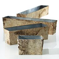 Birch boxes for succulents