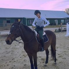 Friend's horse and Reagan