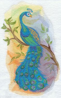 Peacock in Watercolor design (H3133) from www.Emblibrary.com