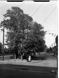 Site for the roundabout  - existing island, bus shelter and view down Kingston Road c. 1955