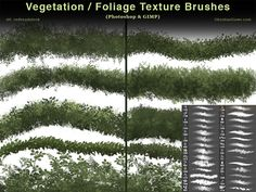 Vegetation / Foliage Textures Photoshop Brushes by redheadstock on DeviantArt Photoshop For Photographers, Photoshop Photography, Photoshop Tutorial, Photoshop Actions, Adobe Photoshop, Photoshop Elements, Texture Brushes Photoshop, Nikon D5200, Deviantart